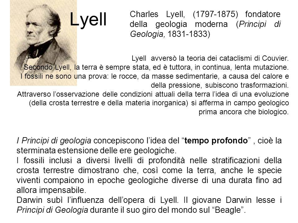 Lyell Charles Lyell, (1797-1875) fondatore della geologia moderna (Principi di Geologia, 1831-1833)