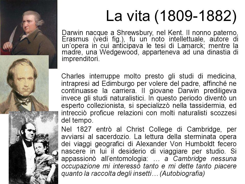 La vita (1809-1882)