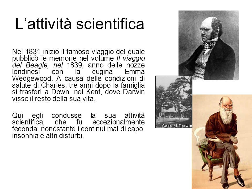 L'attività scientifica