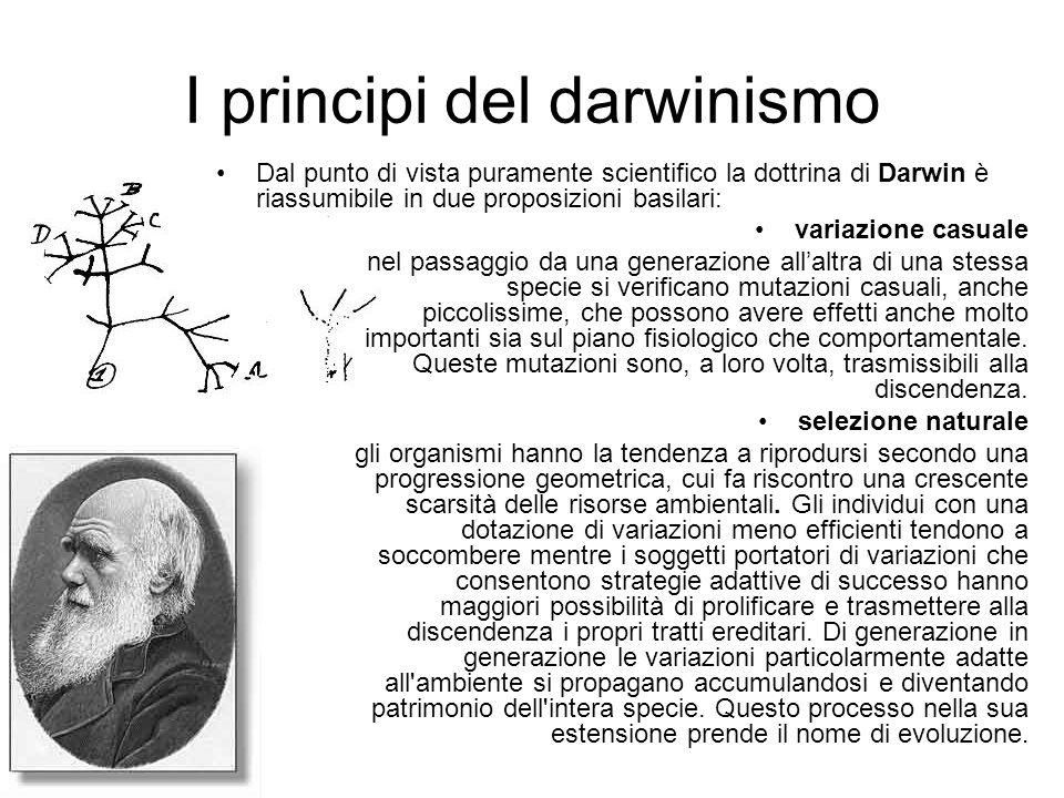 I principi del darwinismo
