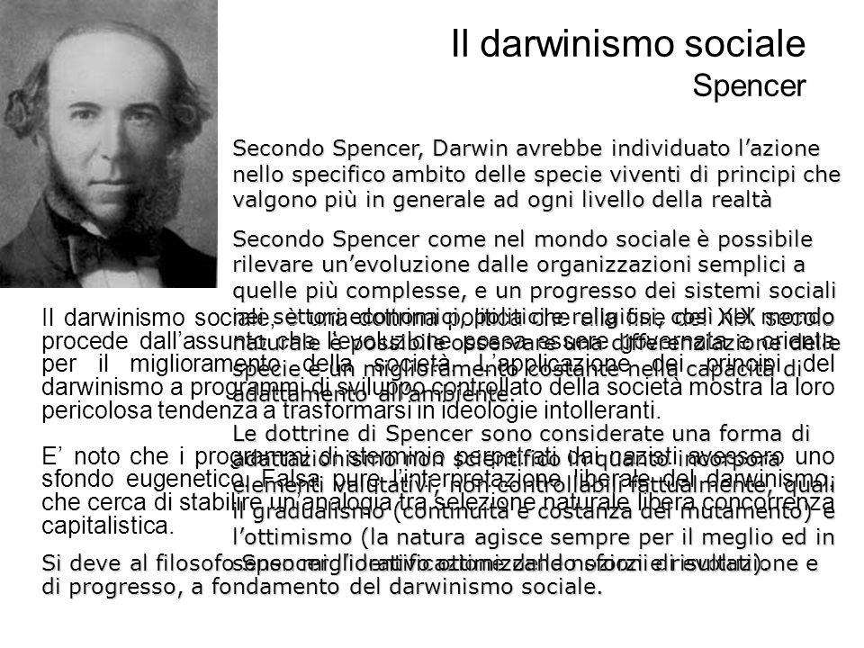 Il darwinismo sociale Spencer