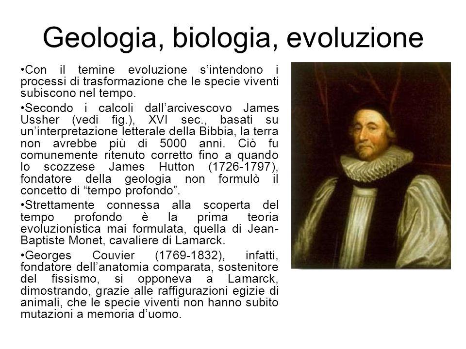 Geologia, biologia, evoluzione
