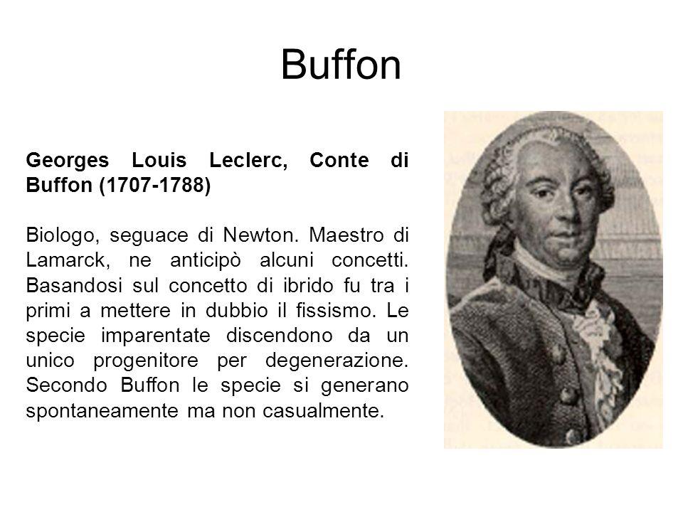 Buffon Georges Louis Leclerc, Conte di Buffon (1707-1788)