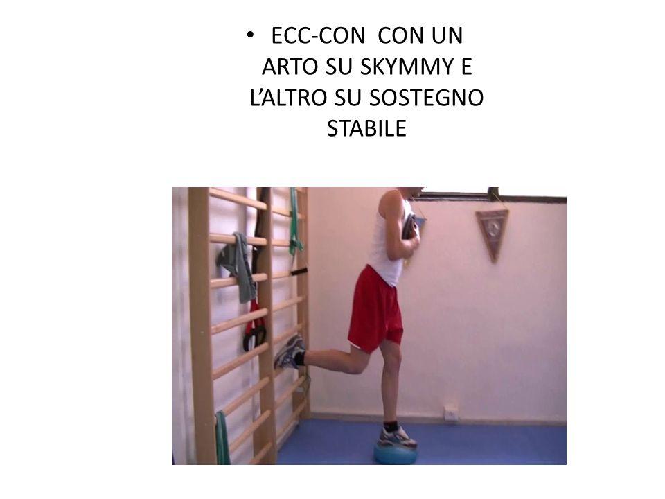 ECC-CON CON UN ARTO SU SKYMMY E L'ALTRO SU SOSTEGNO STABILE