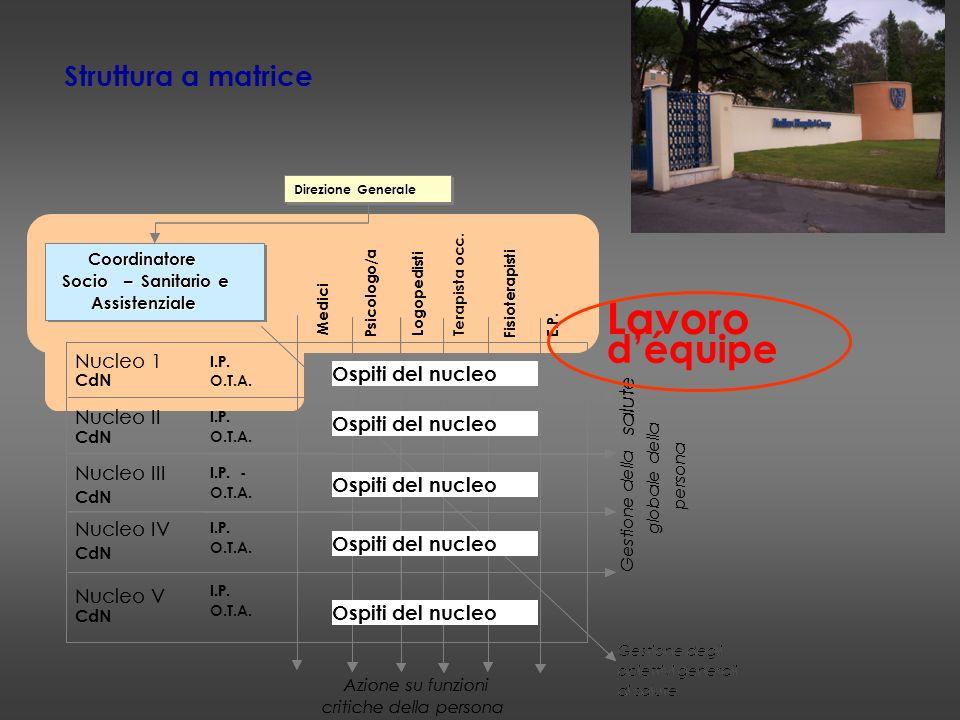 Lavoro d'équipe Struttura a matrice Nucleo 1 Ospiti del nucleo salute