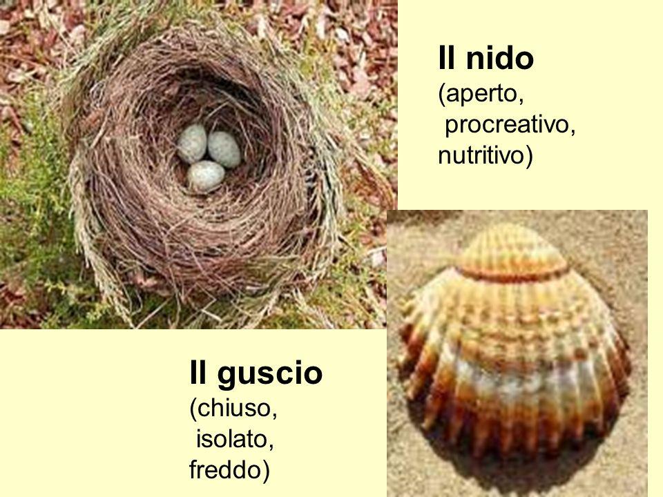 Il nido Il guscio (aperto, procreativo, nutritivo) (chiuso, isolato,