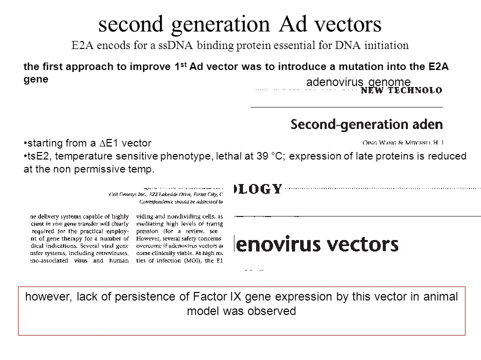 second generation Ad vectors E2A encods for a ssDNA binding protein essential for DNA initiation