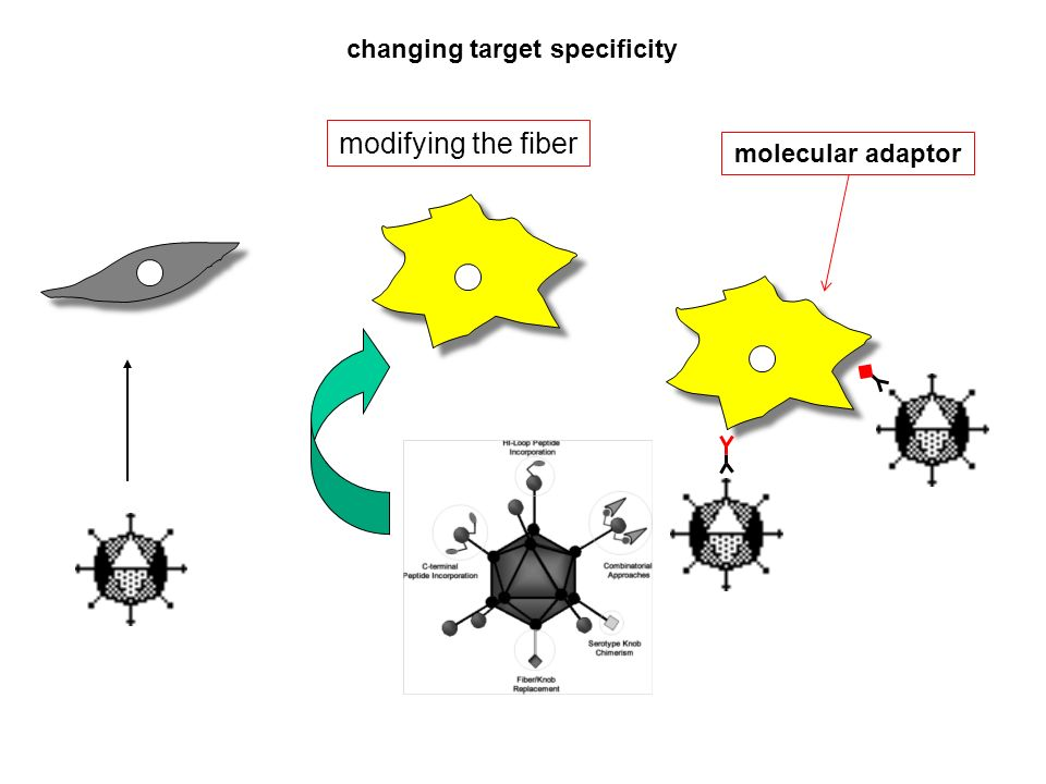 changing target specificity
