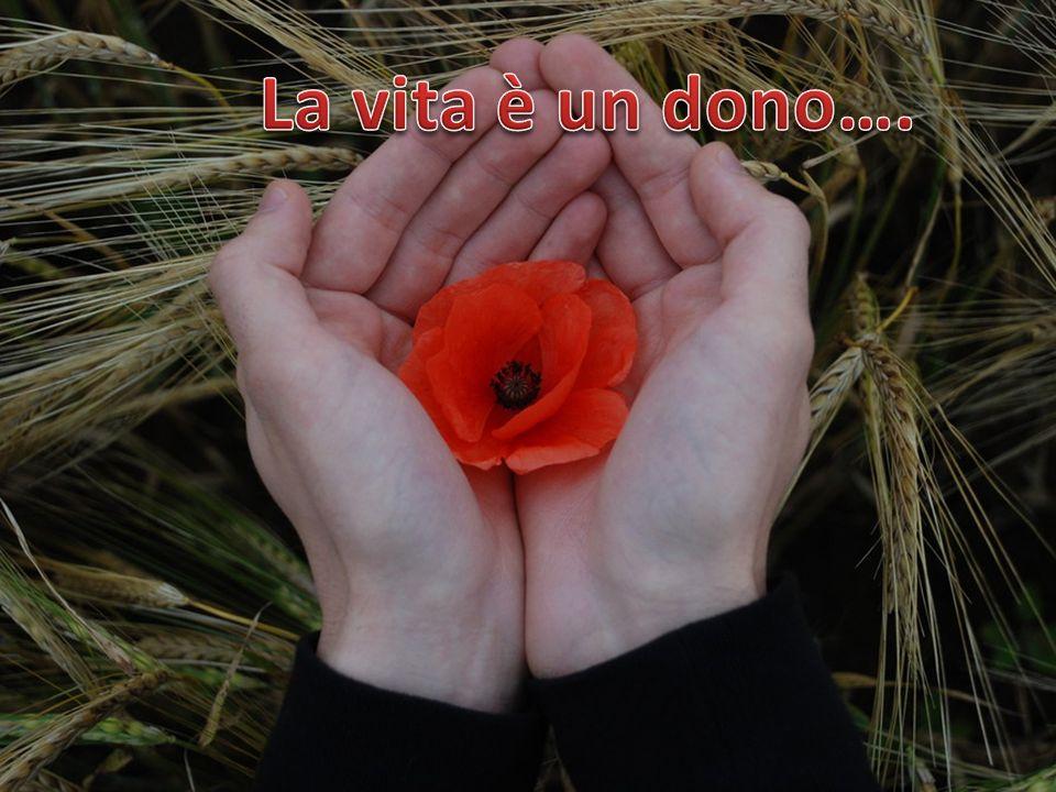 La vita è un dono….