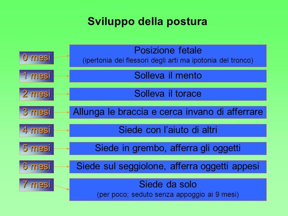Sviluppo della postura