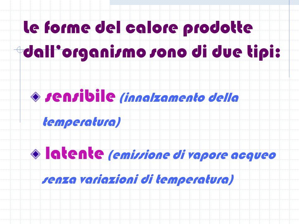 Le forme del calore prodotte dall'organismo sono di due tipi: