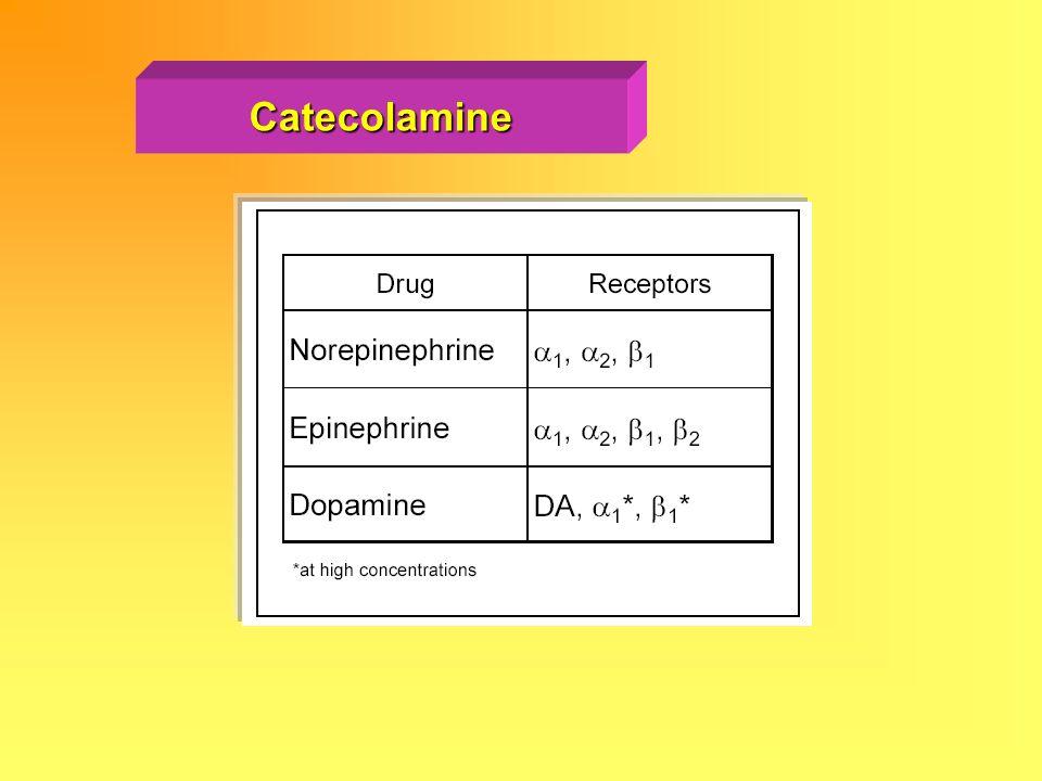 Catecolamine