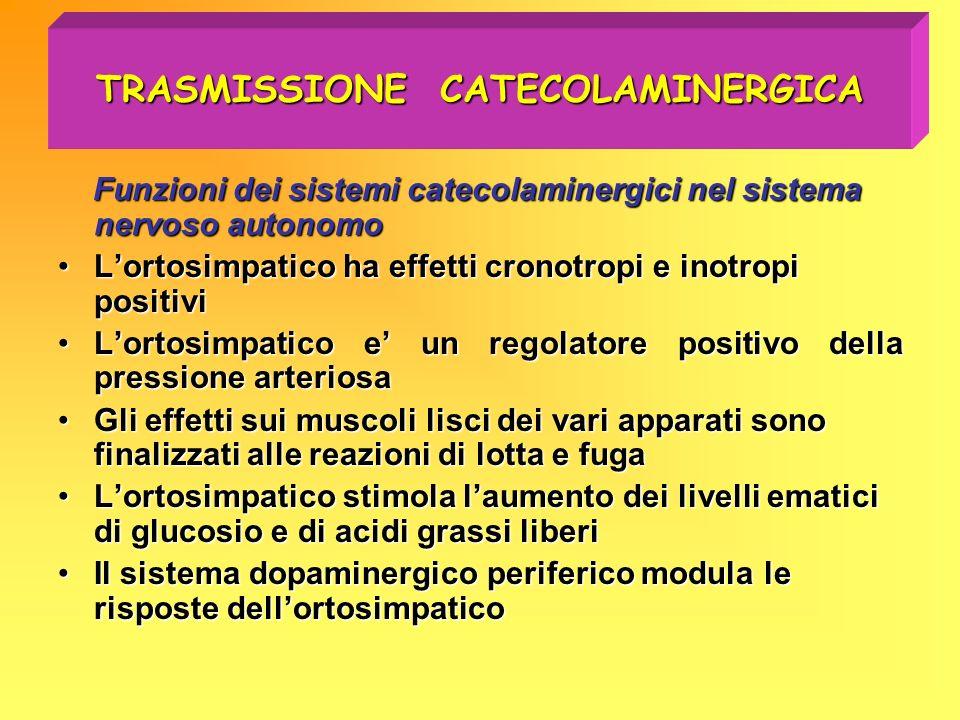 TRASMISSIONE CATECOLAMINERGICA