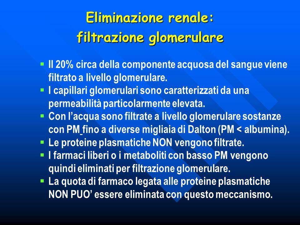 Eliminazione renale: filtrazione glomerulare
