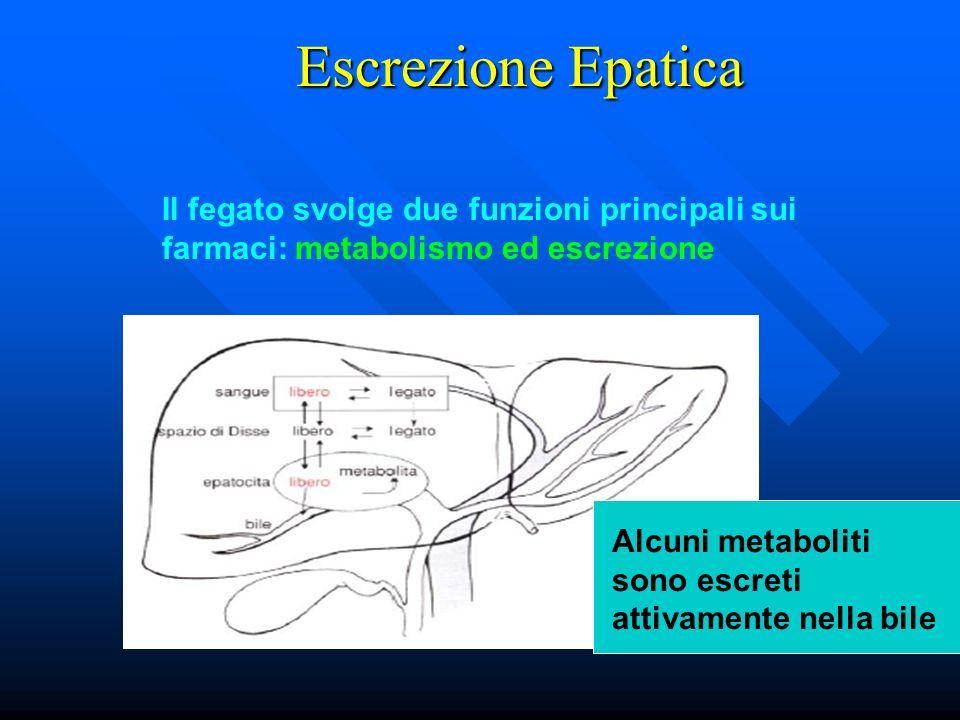 Escrezione Epatica Il fegato svolge due funzioni principali sui farmaci: metabolismo ed escrezione.
