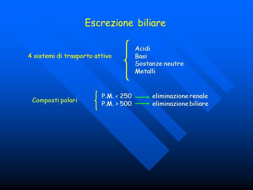 Escrezione biliare Acidi Basi 4 sistemi di trasporto attivo