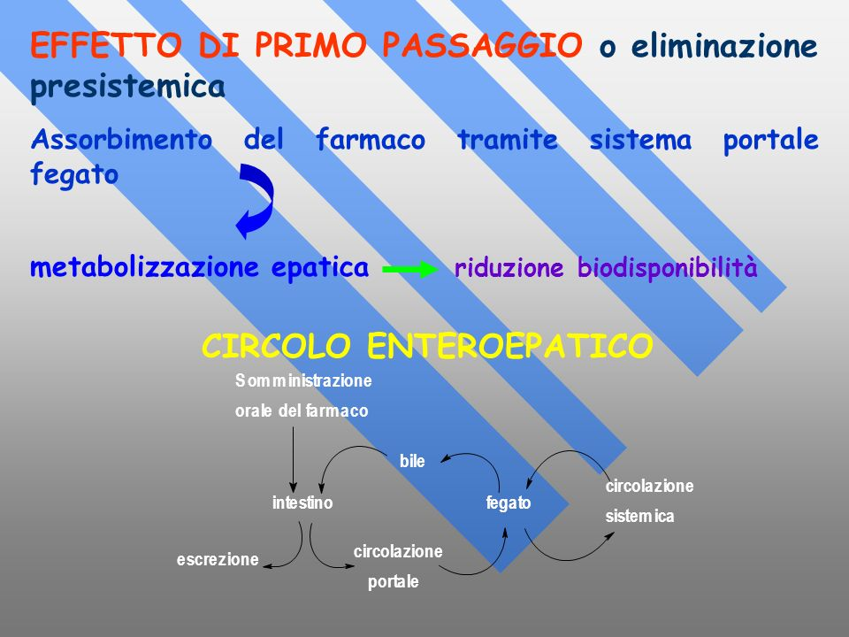 CIRCOLO ENTEROEPATICO