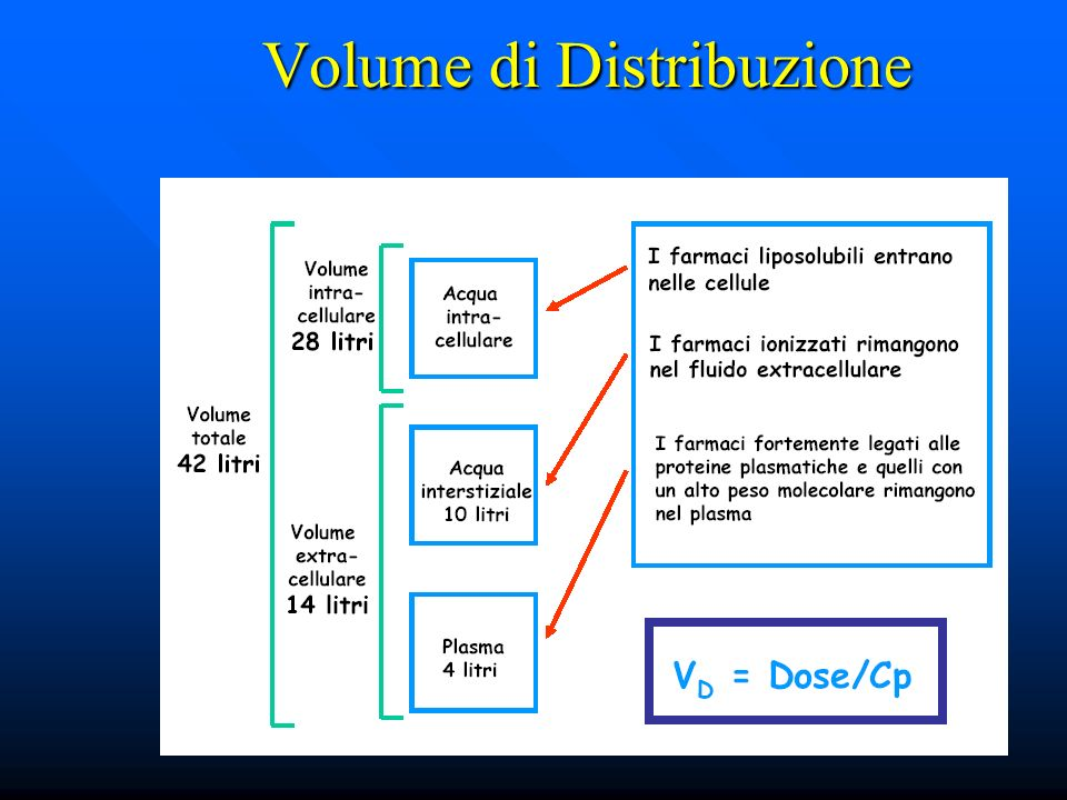 Volume di Distribuzione