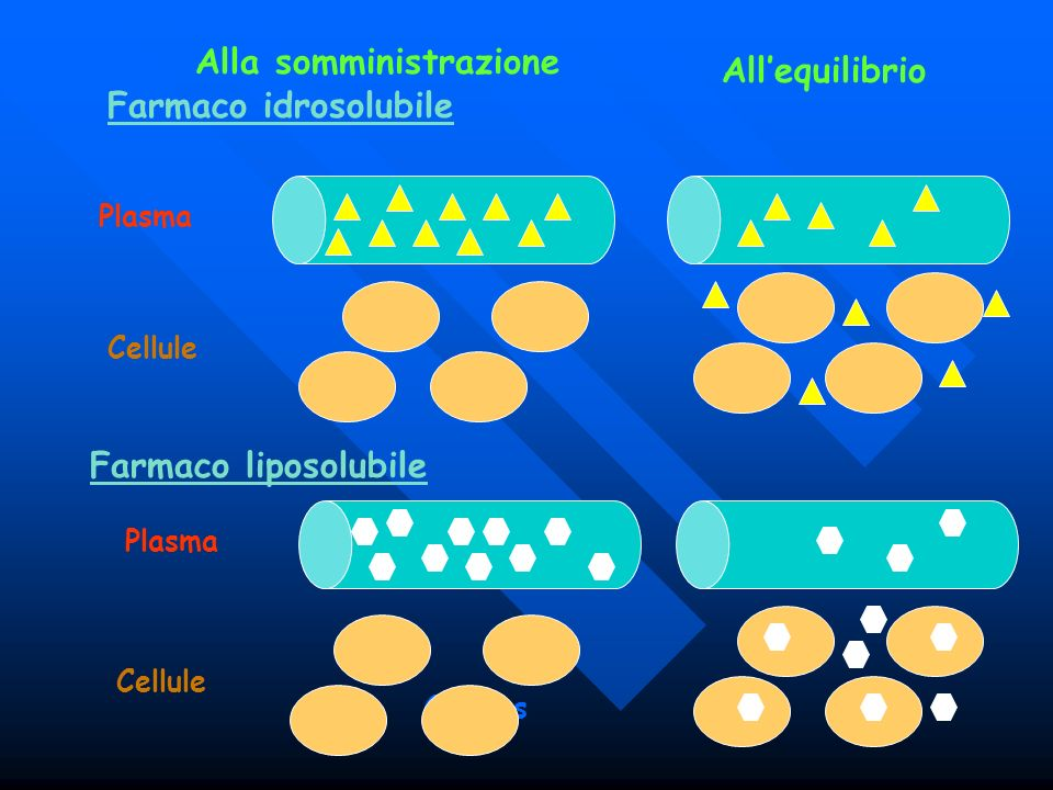 Alla somministrazione All'equilibrio Farmaco idrosolubile