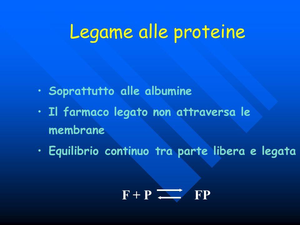 Legame alle proteine F + P FP Soprattutto alle albumine