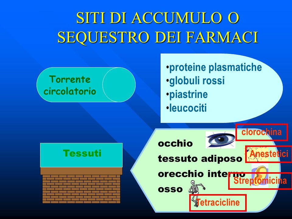SITI DI ACCUMULO O SEQUESTRO DEI FARMACI
