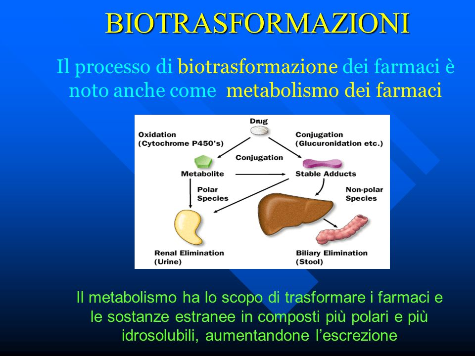 BIOTRASFORMAZIONI Il processo di biotrasformazione dei farmaci è noto anche come metabolismo dei farmaci.