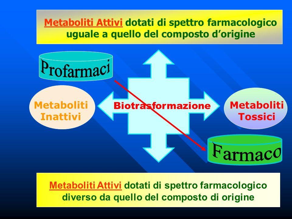 Metaboliti Attivi dotati di spettro farmacologico uguale a quello del composto d'origine