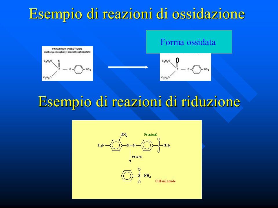 Esempio di reazioni di ossidazione