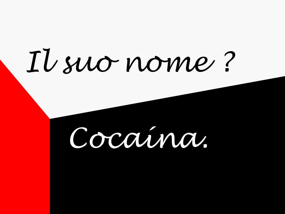 Il suo nome Cocaína.