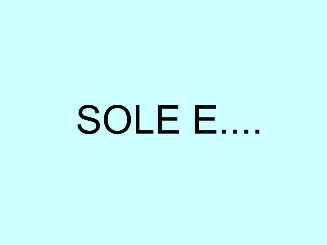 SOLE E....