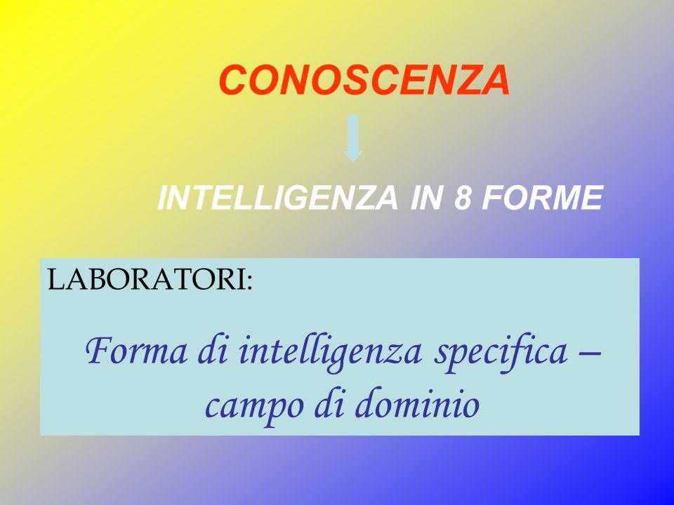 Forma di intelligenza specifica – campo di dominio