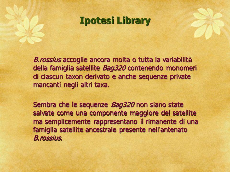 Ipotesi Library
