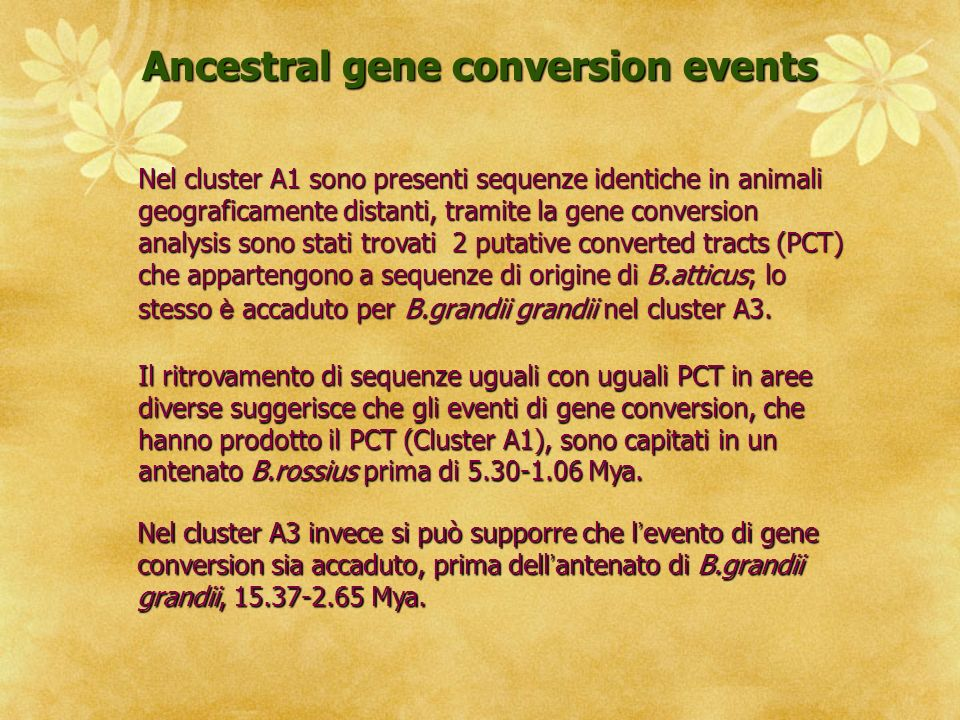 Ancestral gene conversion events
