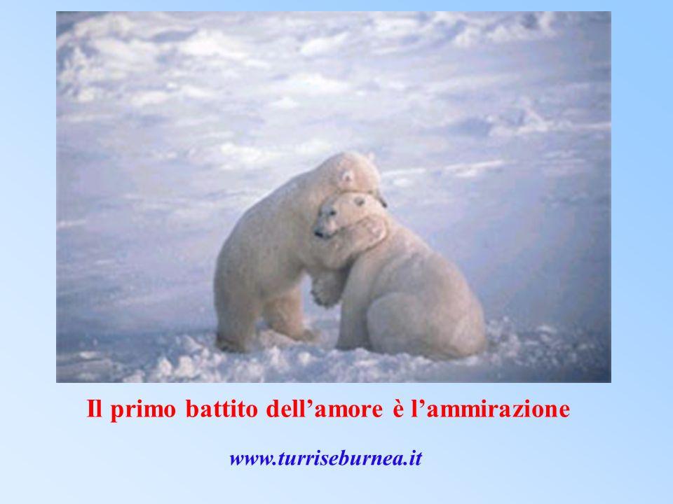 Il primo battito dell'amore è l'ammirazione