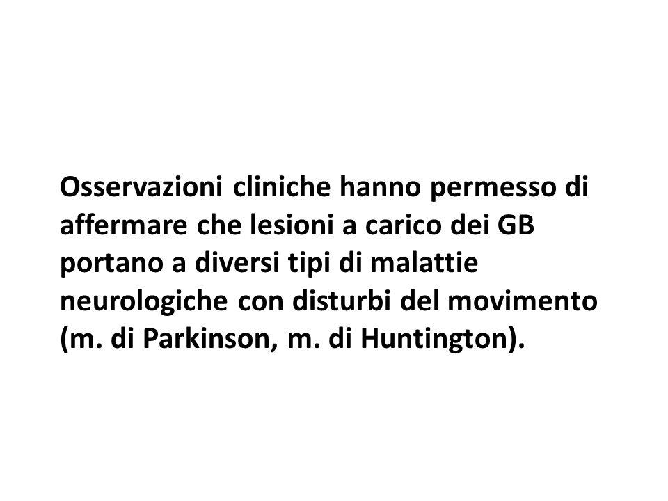 Osservazioni cliniche hanno permesso di affermare che lesioni a carico dei GB portano a diversi tipi di malattie neurologiche con disturbi del movimento (m.