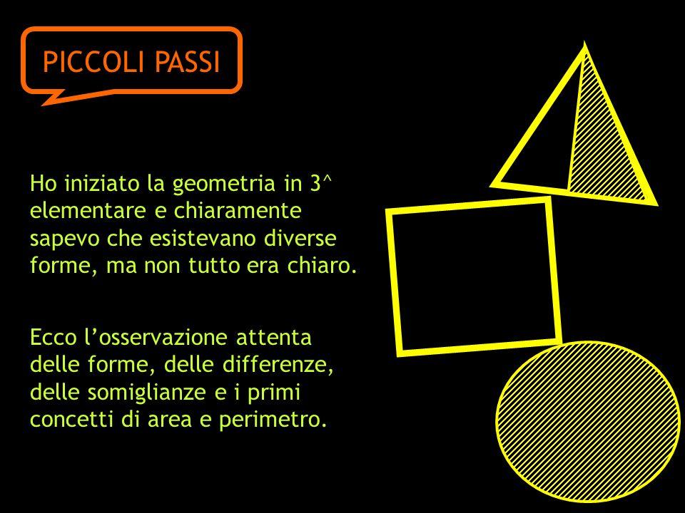 PICCOLI PASSI Ho iniziato la geometria in 3^ elementare e chiaramente sapevo che esistevano diverse forme, ma non tutto era chiaro.