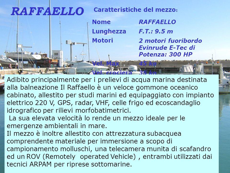 RAFFAELLO Caratteristiche del mezzo: Nome. RAFFAELLO. Lunghezza. F.T.: 9.5 m. Motori. 2 motori fuoribordo Evinrude E-Tec di Potenza: 300 HP.