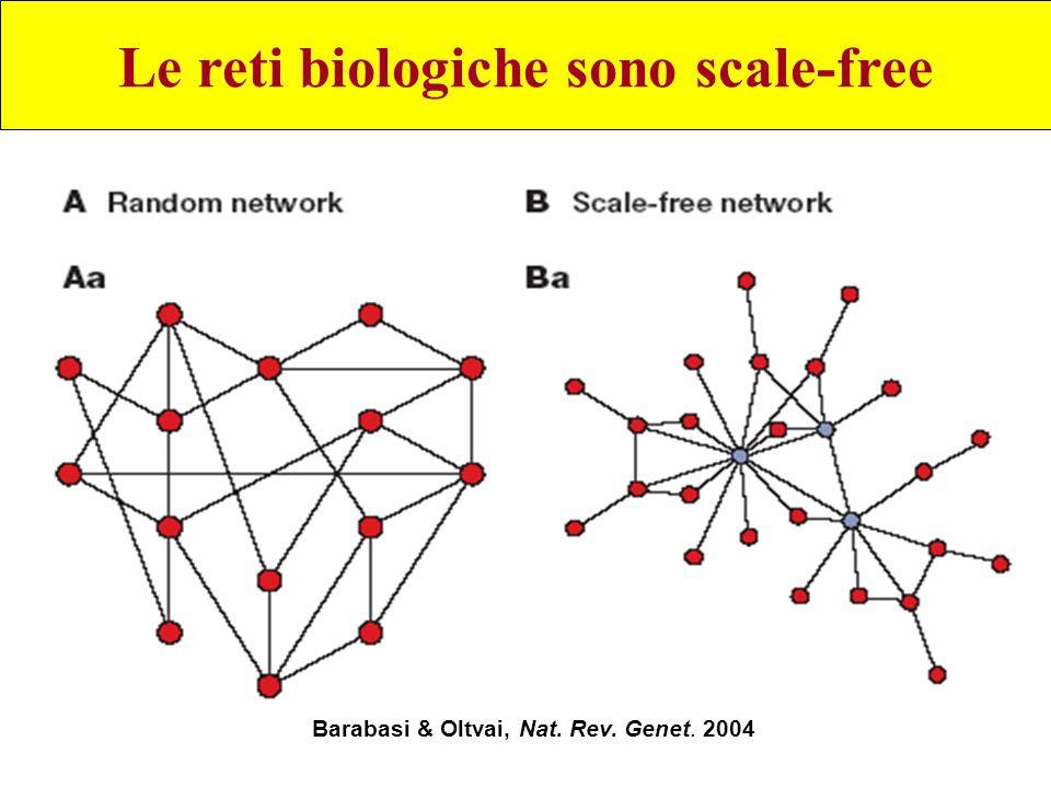 Le reti biologiche sono scale-free