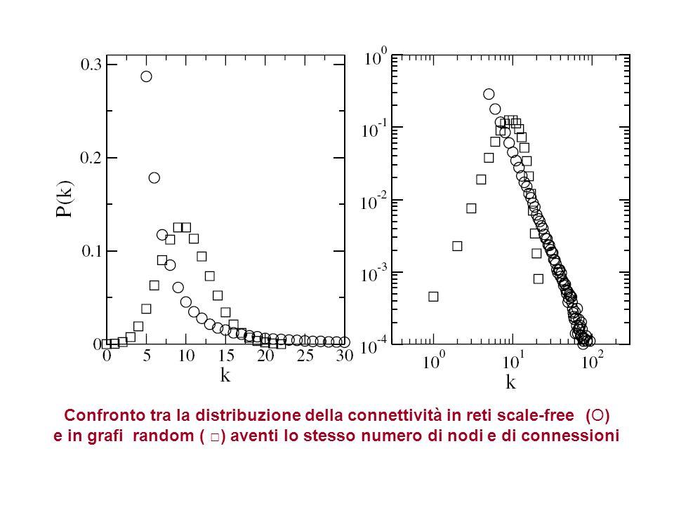 Confronto tra la distribuzione della connettività in reti scale-free (O)