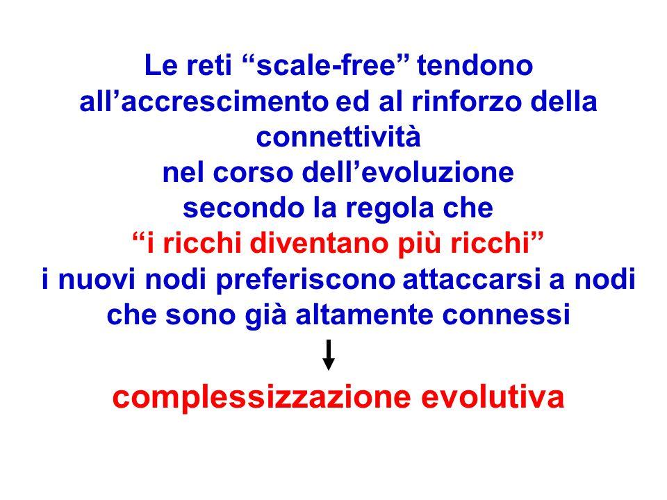 Le reti scale-free tendono all'accrescimento ed al rinforzo della connettività nel corso dell'evoluzione secondo la regola che i ricchi diventano più ricchi i nuovi nodi preferiscono attaccarsi a nodi che sono già altamente connessi complessizzazione evolutiva