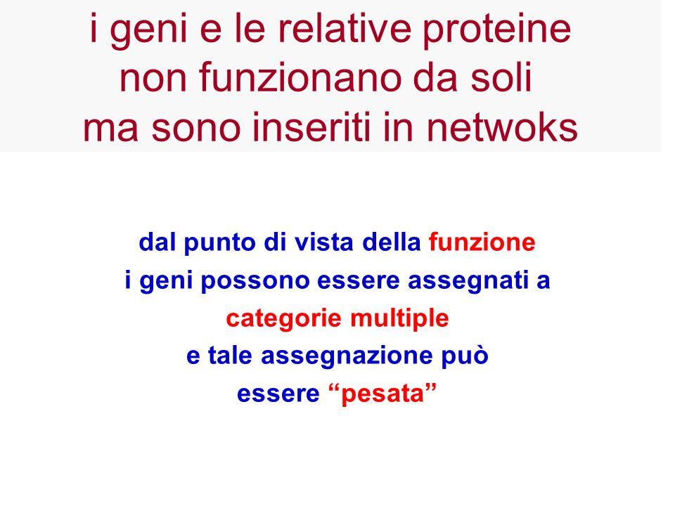 i geni e le relative proteine non funzionano da soli