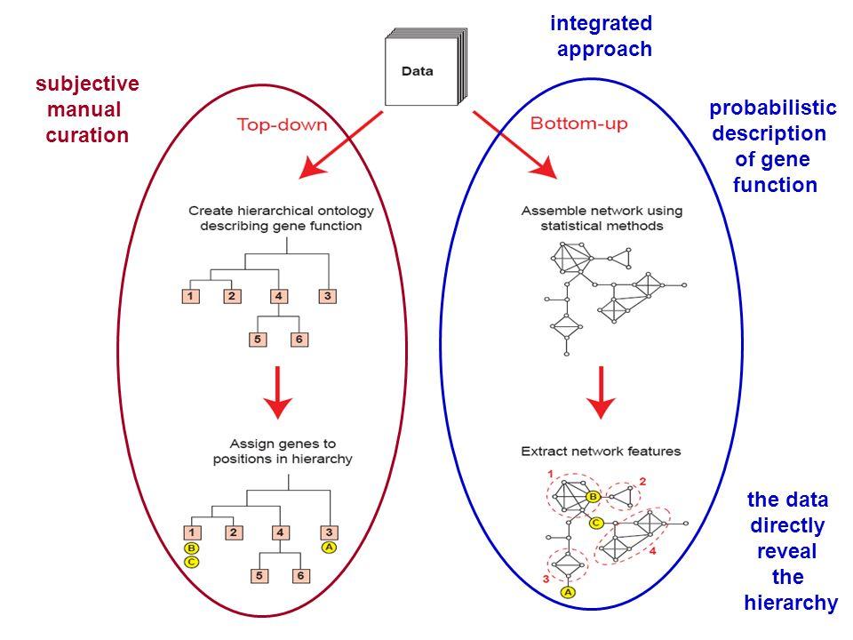 integratedapproach. subjective. manual. curation. probabilistic. description. of gene. function. the data.
