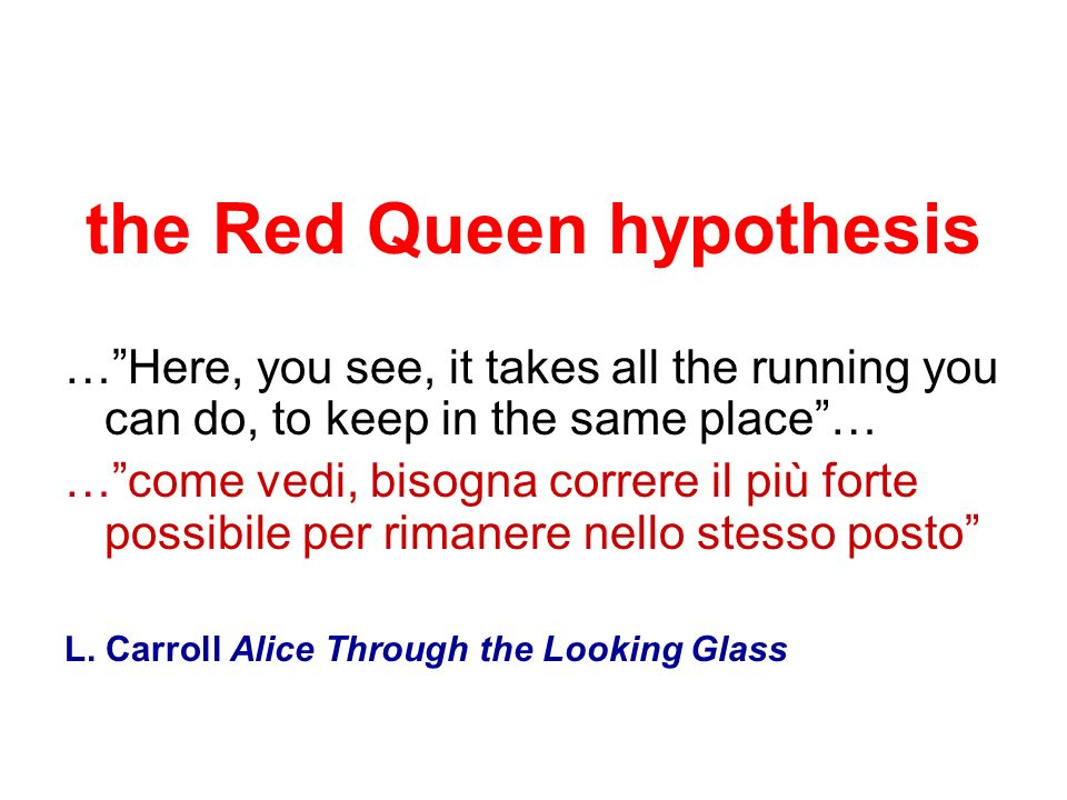 the Red Queen hypothesis