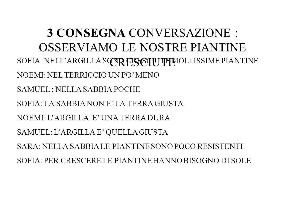 3 CONSEGNA CONVERSAZIONE : OSSERVIAMO LE NOSTRE PIANTINE CRESCIUTE