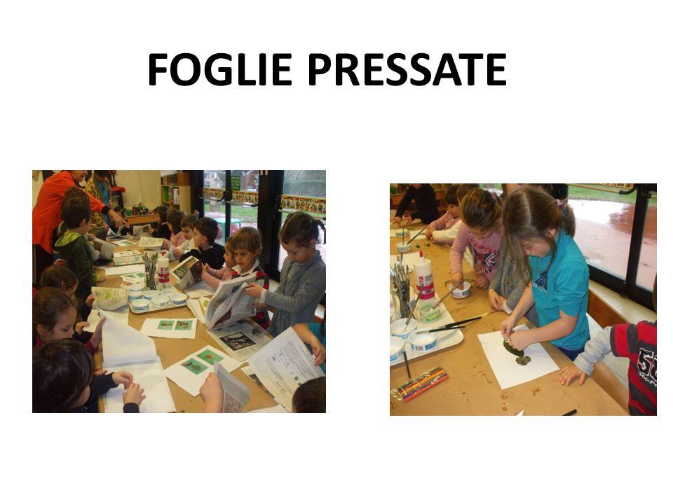 FOGLIE PRESSATE