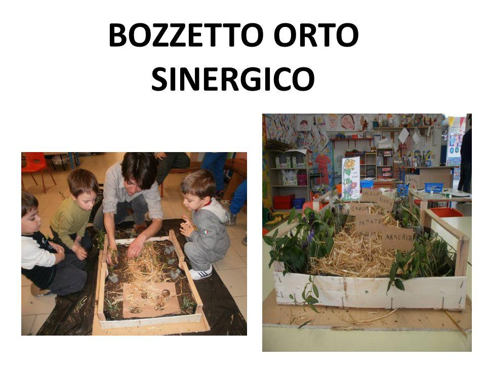 BOZZETTO ORTO SINERGICO