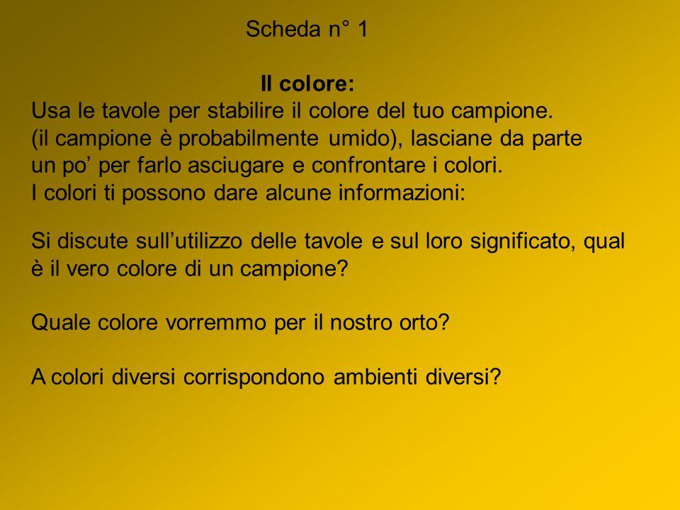 Scheda n° 1 Il colore: Usa le tavole per stabilire il colore del tuo campione.