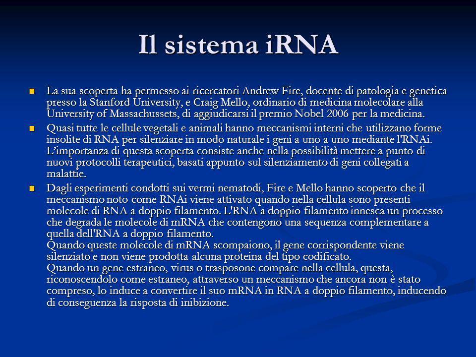 Il sistema iRNA