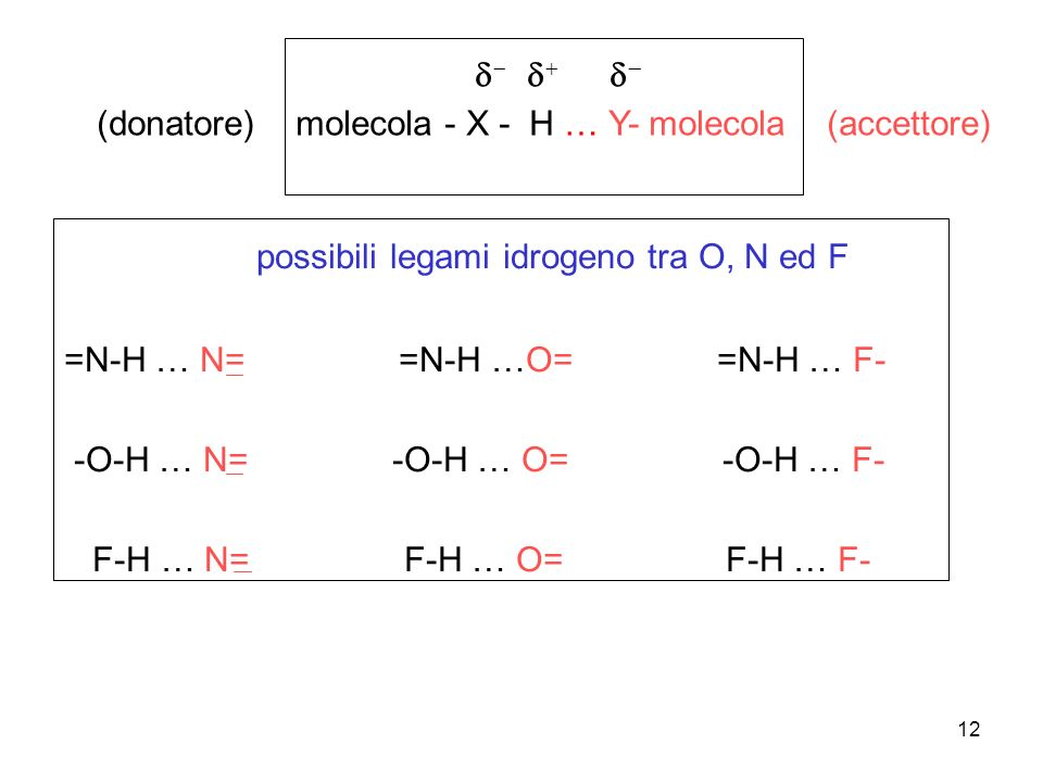 possibili legami idrogeno tra O, N ed F