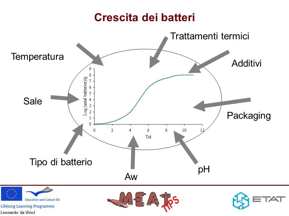 Crescita dei batteri Trattamenti termici Temperatura Additivi Sale
